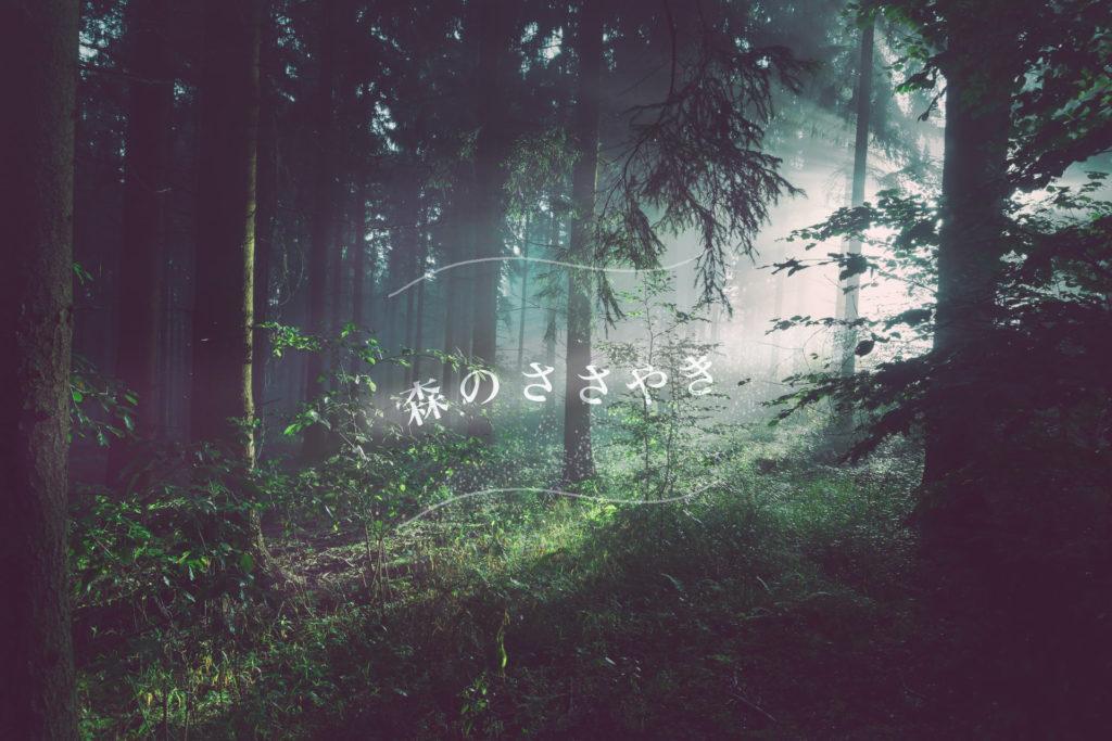 森のささやき風に加工